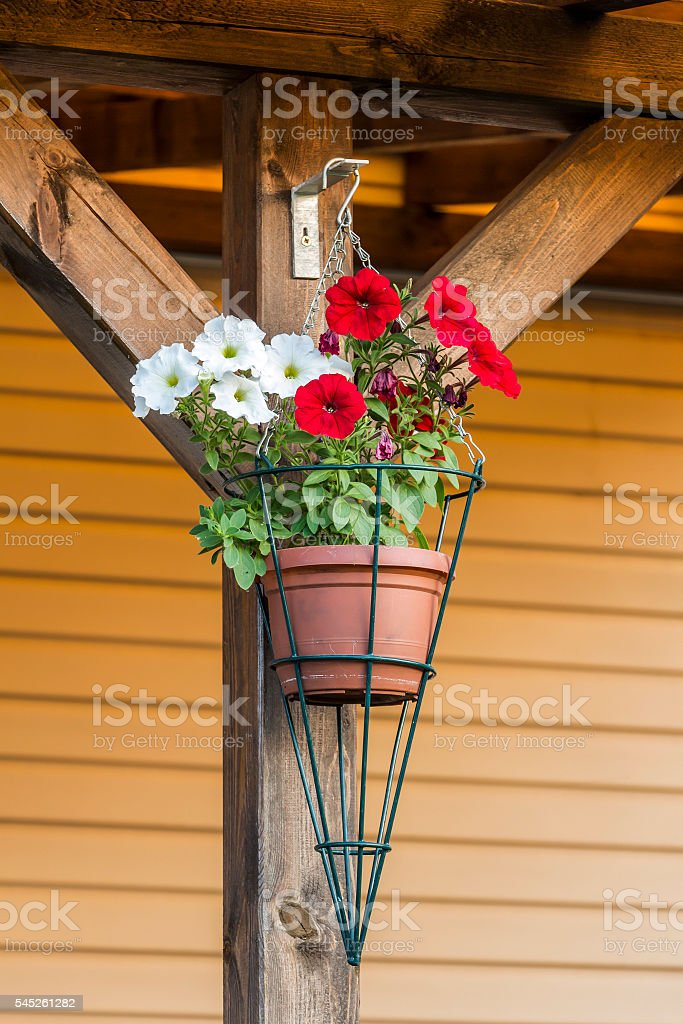Flower plant pots stock photo