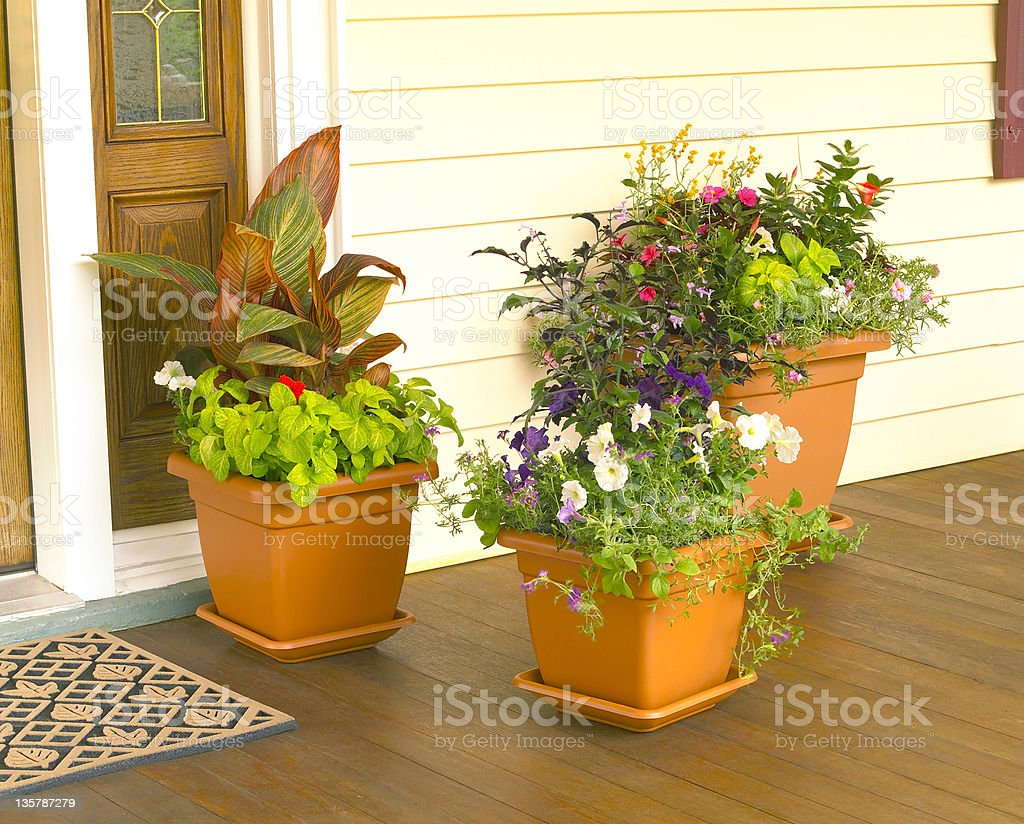 Flower Planters royalty-free stock photo
