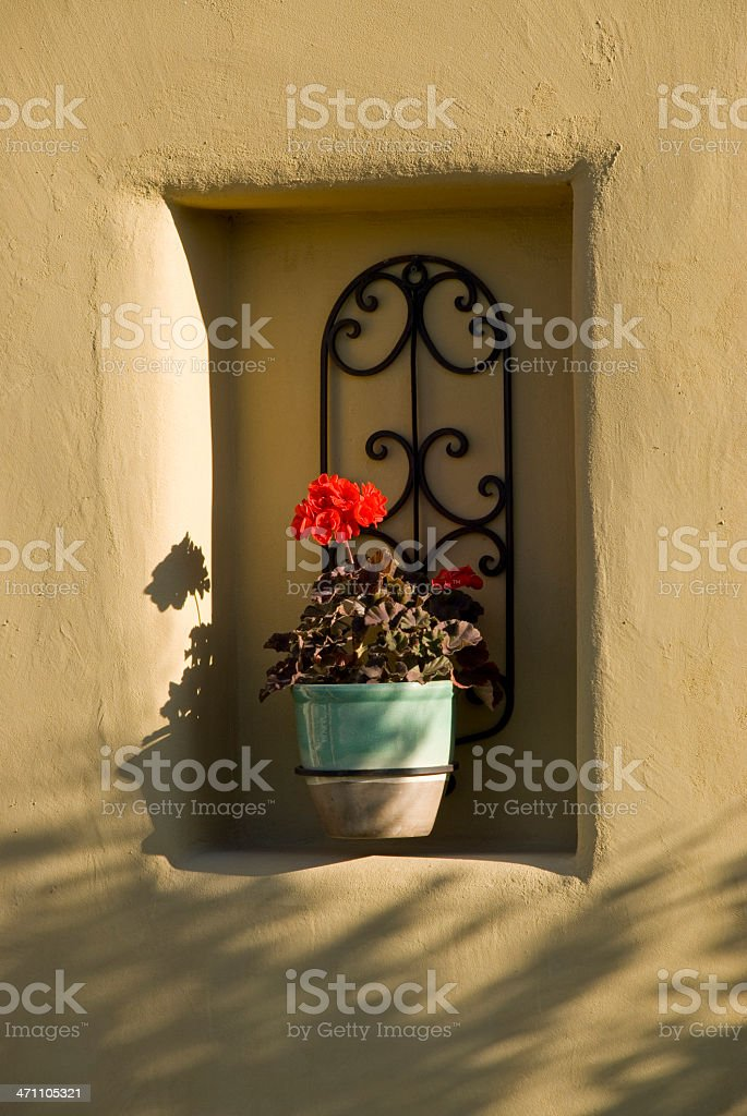Flower pot in a stucco recessed wall royalty-free stock photo