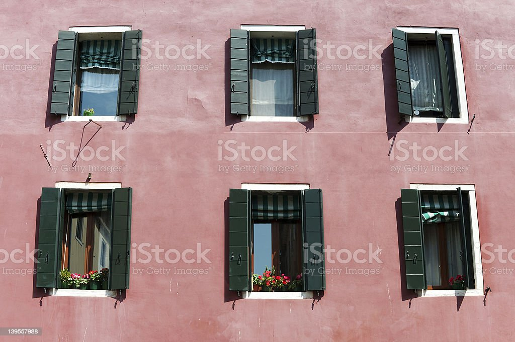 Flower Pot In Window With Lace Curtain royalty-free stock photo