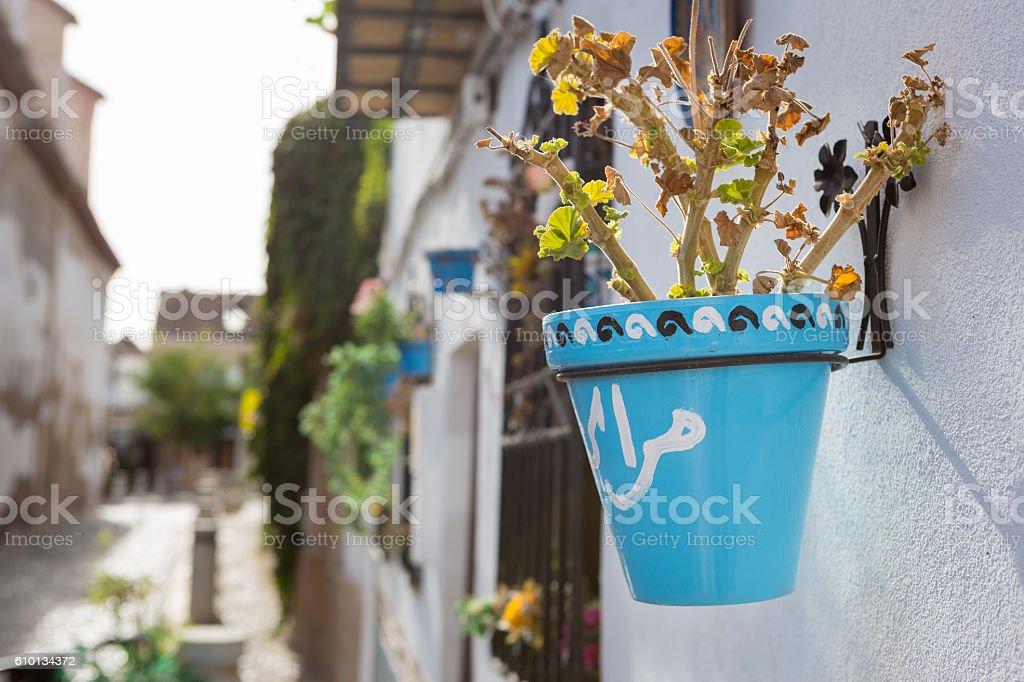 Flower pot on home in the Albaicín neighborhood, Granada, Spain stock photo