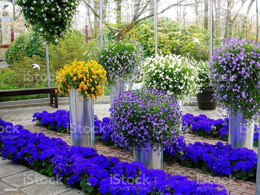Flower Pots and Spring Flowers Keukenhof Netherlands stock photo