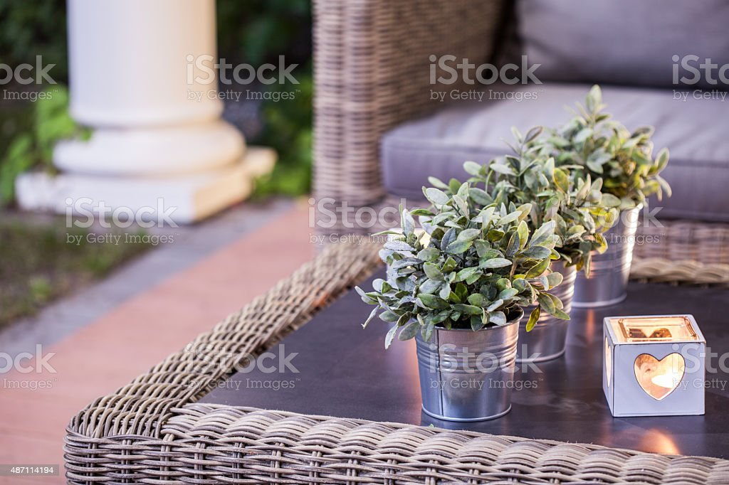 Flower pots on the table stock photo