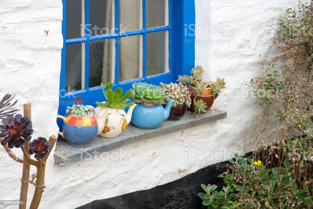 Flower pots stock photo