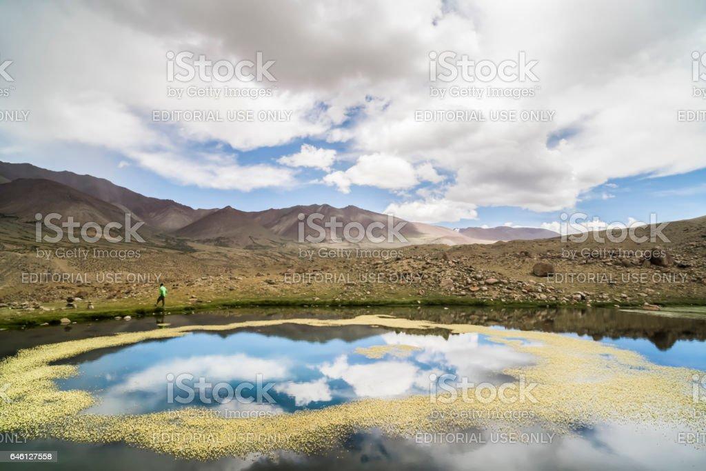 Flower ring over a small lake near Nemaling, Markha valley stock photo