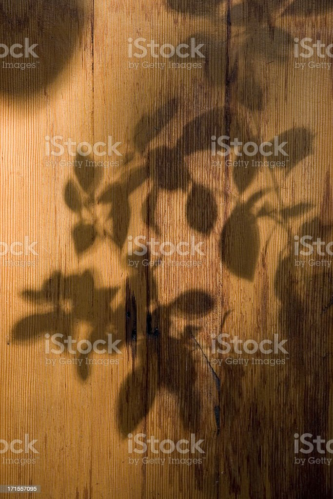 Flower shadow on wood royalty-free stock photo