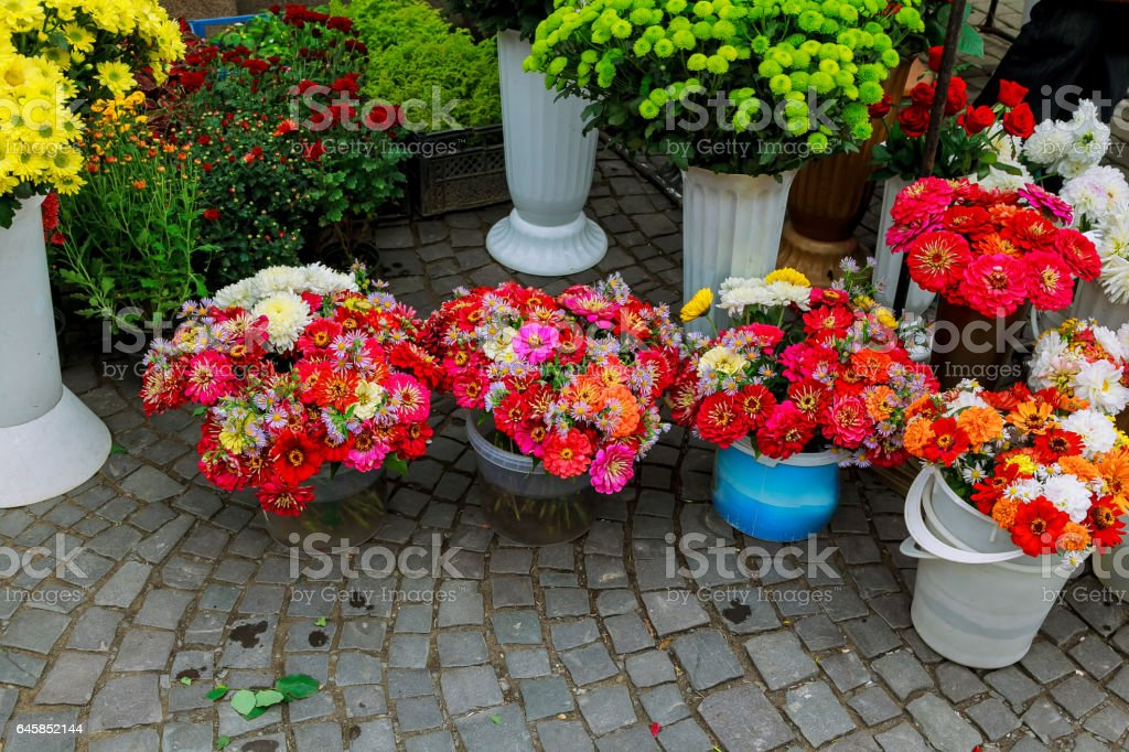 Flower shop outdoor stand with colorful flower pots stock photo