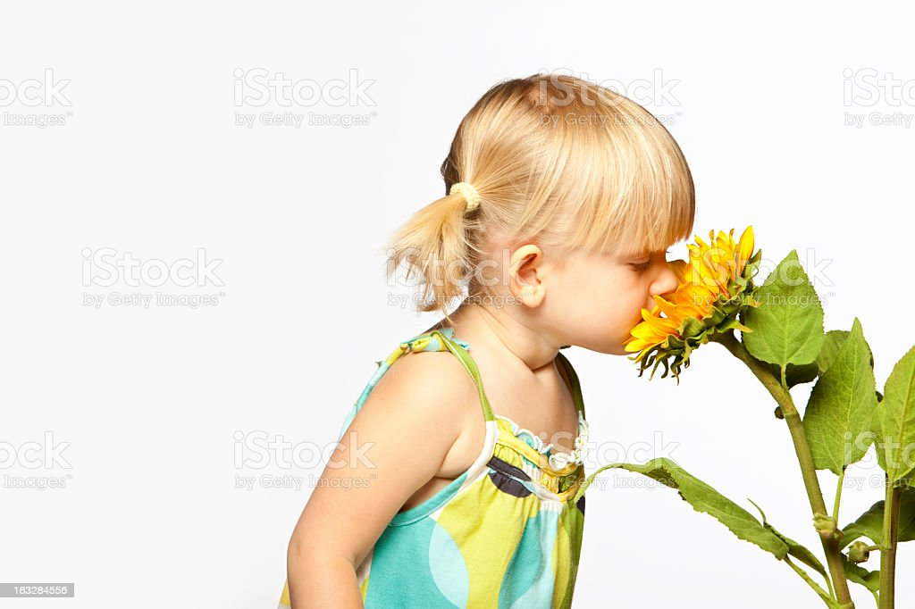 Flower Smelling royalty-free stock photo