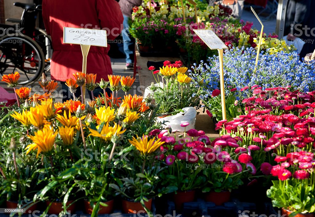 Flower stall at Les Halles Market in Dijon, France stock photo