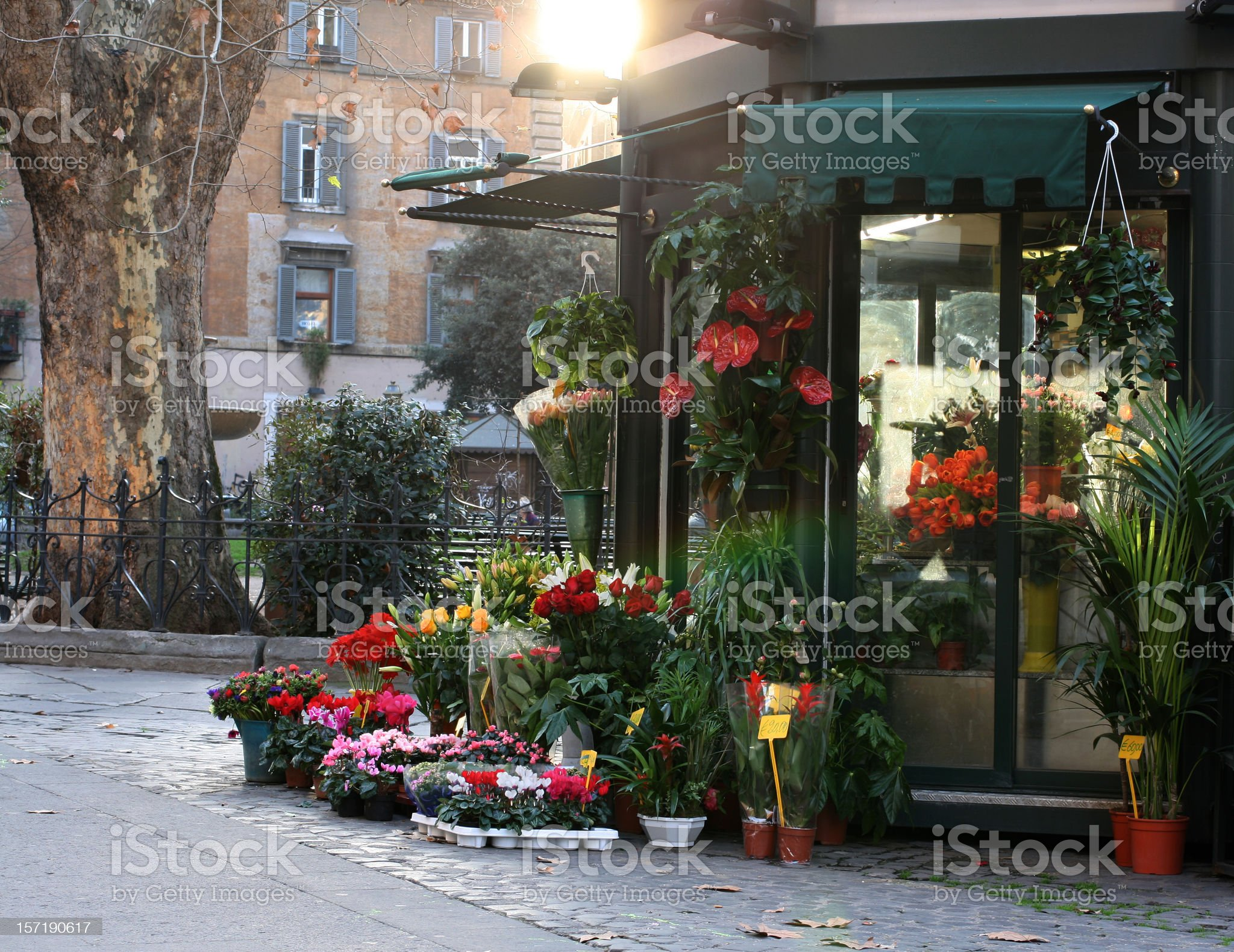 Flower stand in Rome royalty-free stock photo