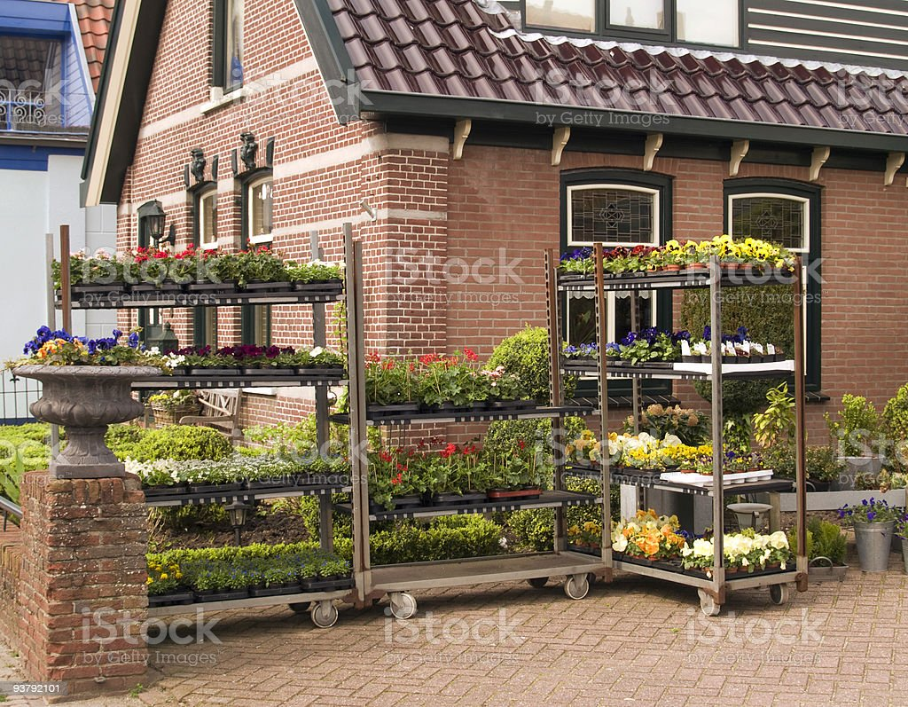 Flower Vendor royalty-free stock photo