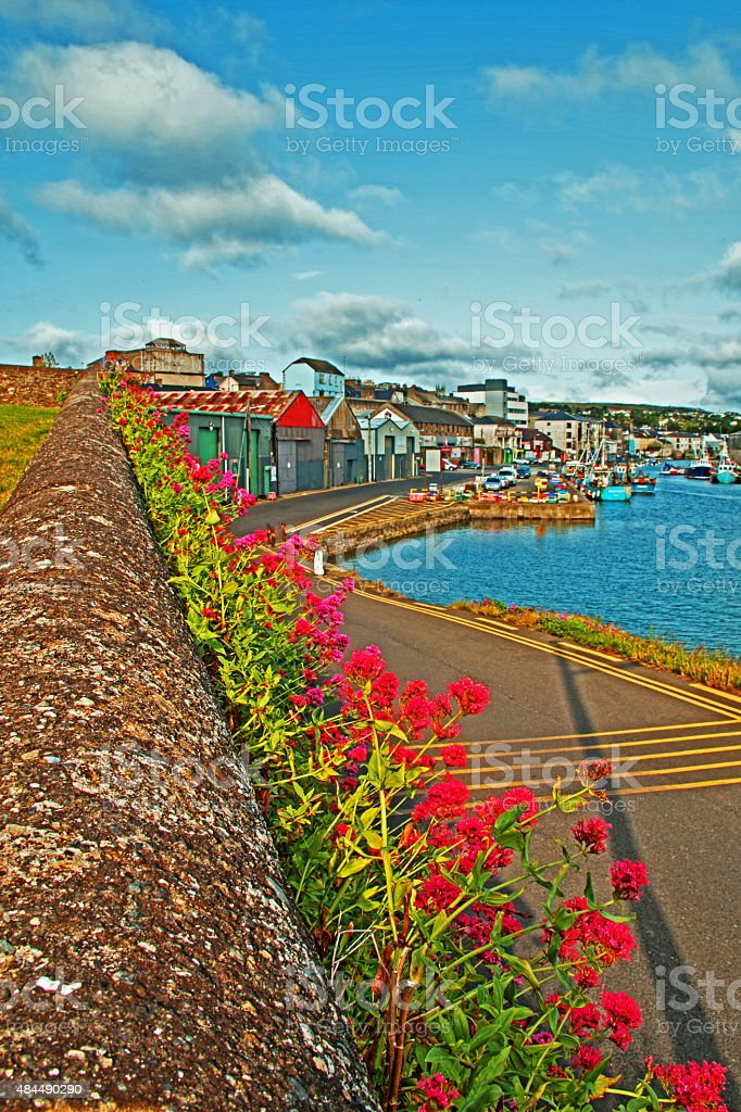 Flower wall in Wicklow Ireland Commerical Harbor and Docks stock photo
