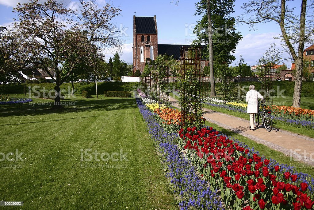 flower way to church royalty-free stock photo