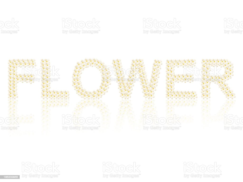 Flower word created from flowers on white background royalty-free stock photo