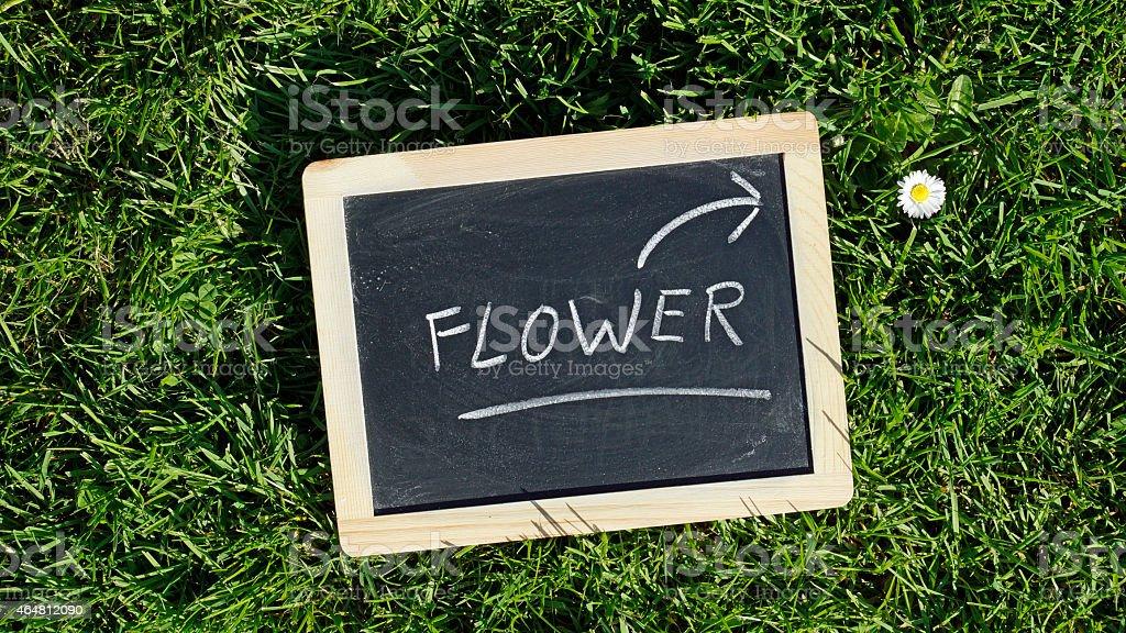 Flower written stock photo