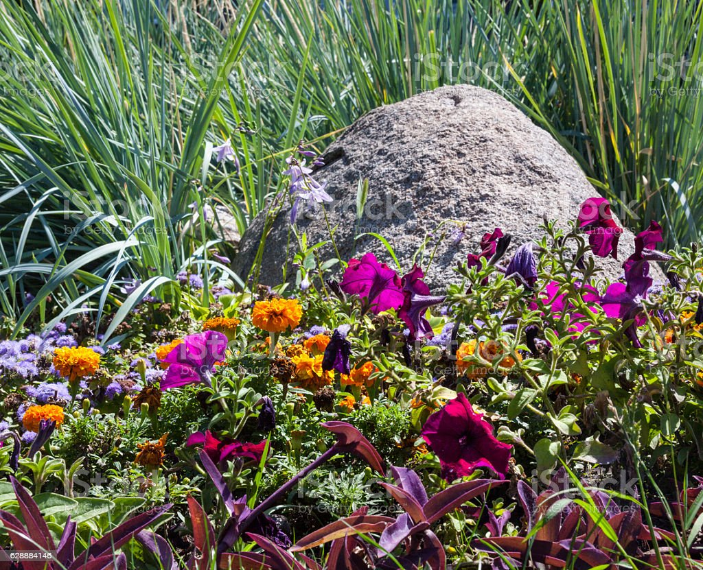 Flowerbed with big gray stone stock photo