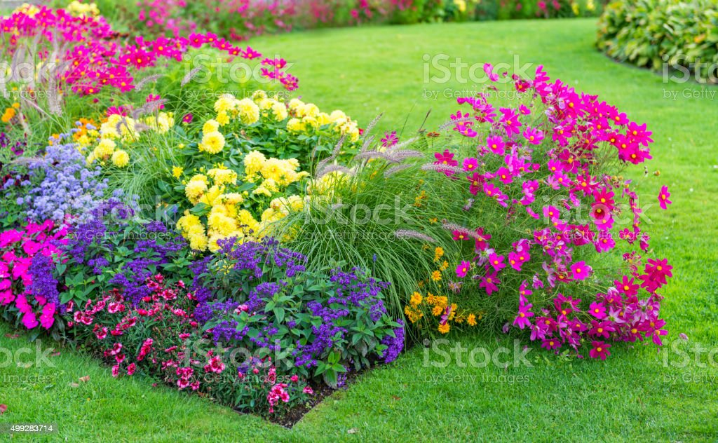 Flowerbeds and lawn stock photo