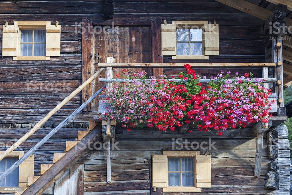 Flowering balcony royalty-free stock photo