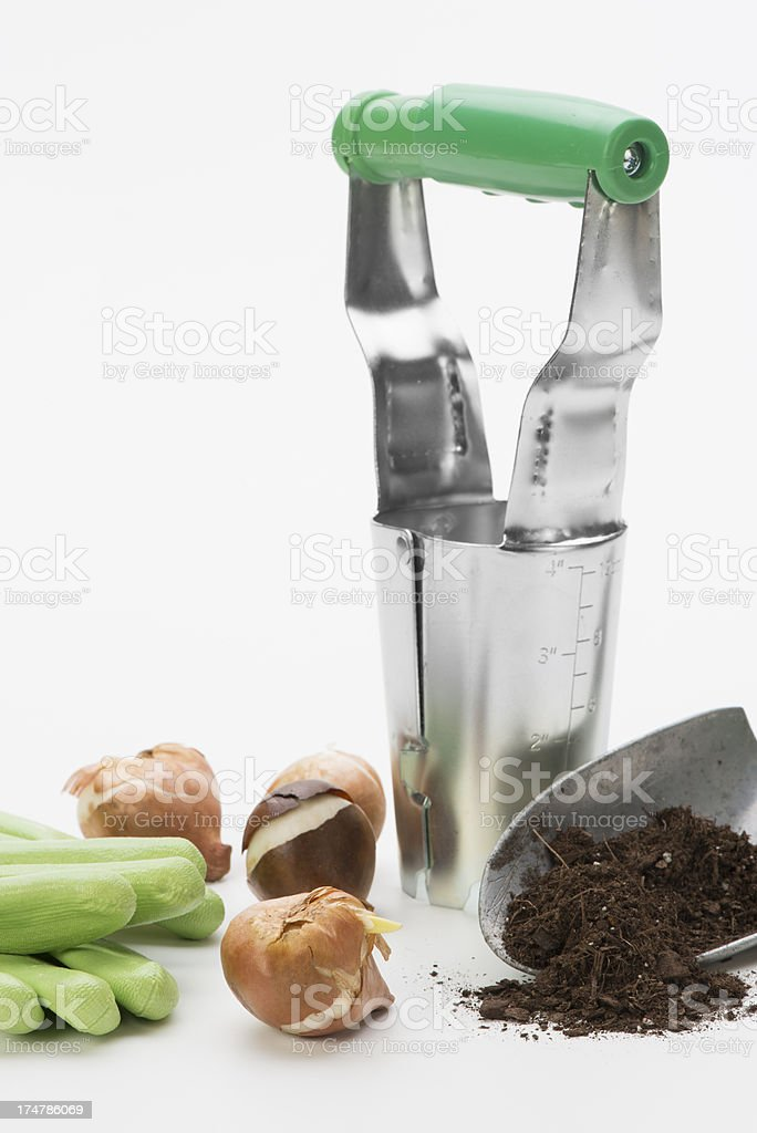Flowering bulb planting supplies-vertical stock photo