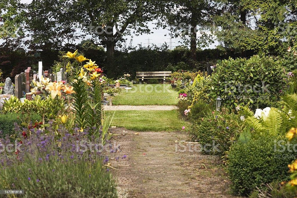 flowering graveyard royalty-free stock photo