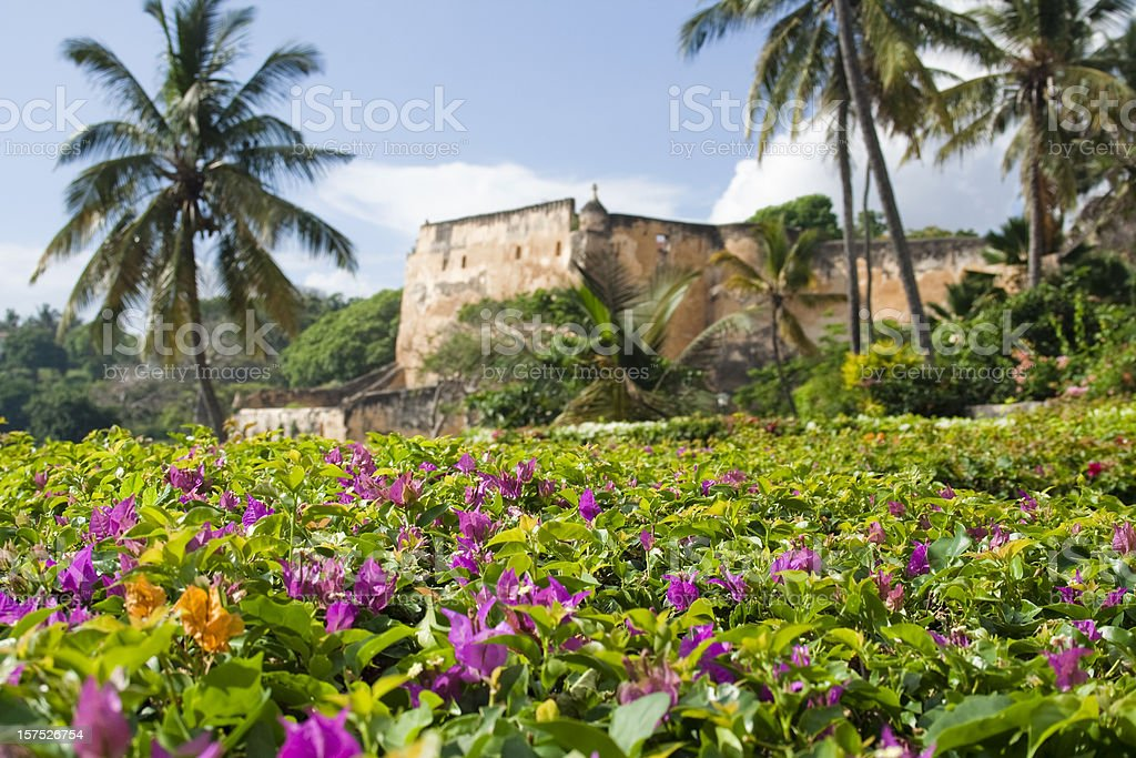 Flowering hedge with fort backdrop stock photo