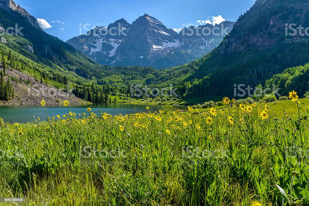 Flowering Mountain Valley stock photo