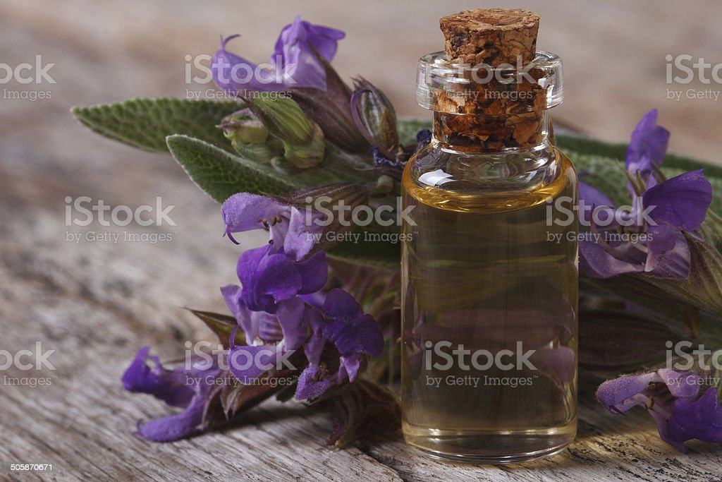 flowering sage and fragrant oil horizontal stock photo