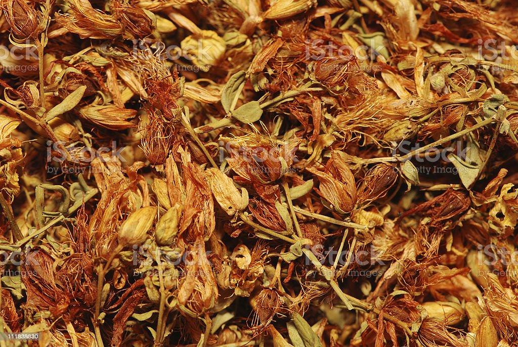 Flowering tea background stock photo