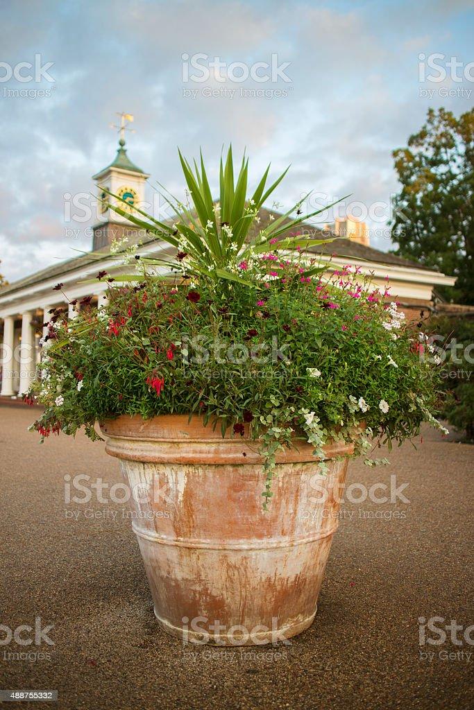 Flowerpot in a public garden stock photo
