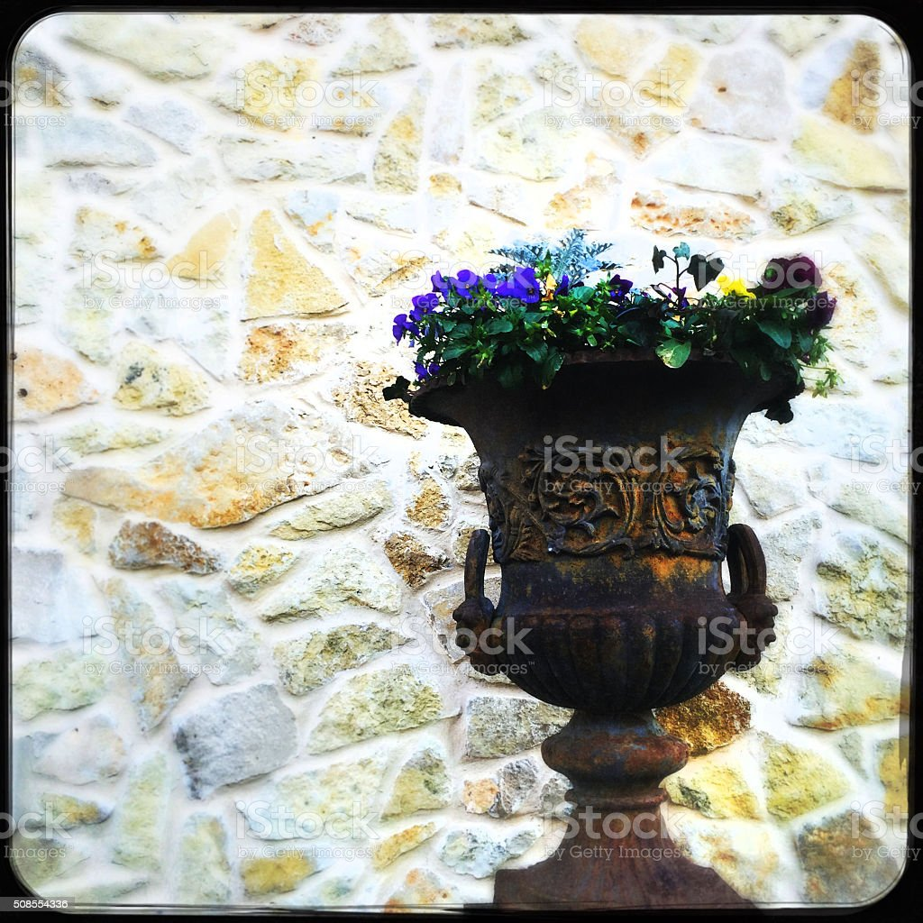 Flowerpot Planter with Flowers on Stone Wall Background stock photo