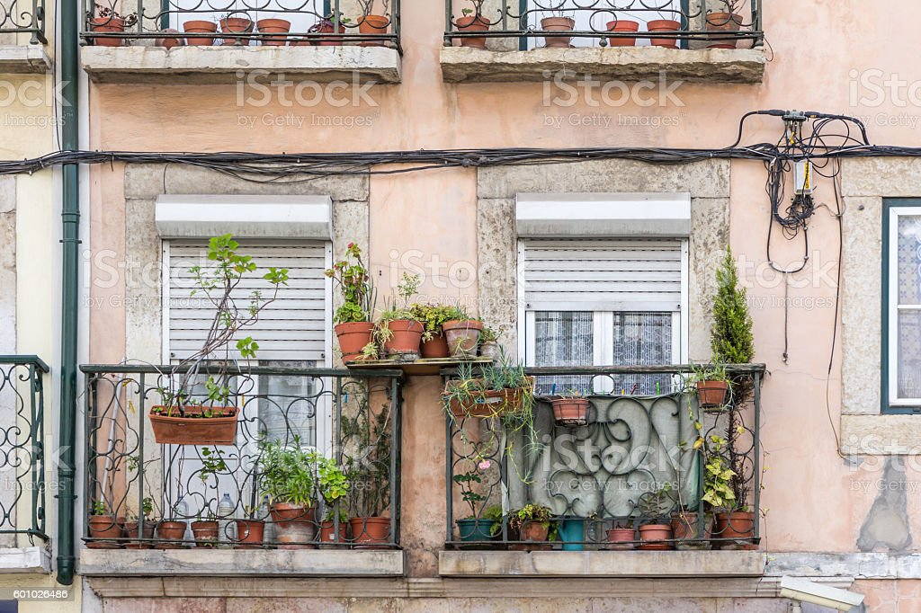 Flowerpots and house plants on an old weatherd  balcony stock photo