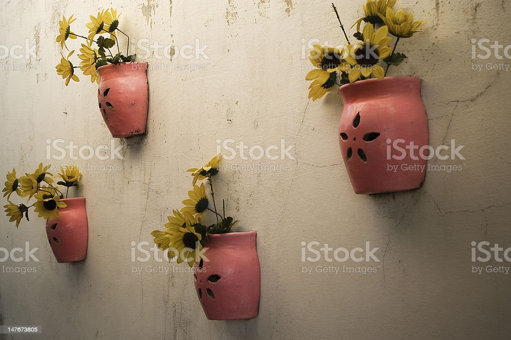 Flowerpots on a Wall stock photo