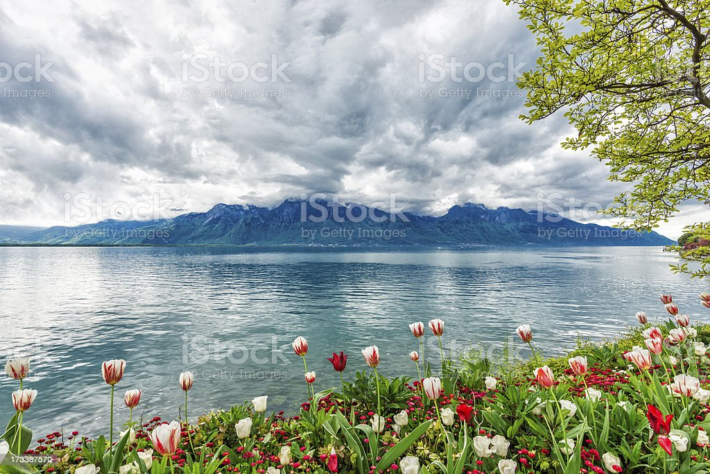 Flowers against mountains, Montreux. Switzerland royalty-free stock photo