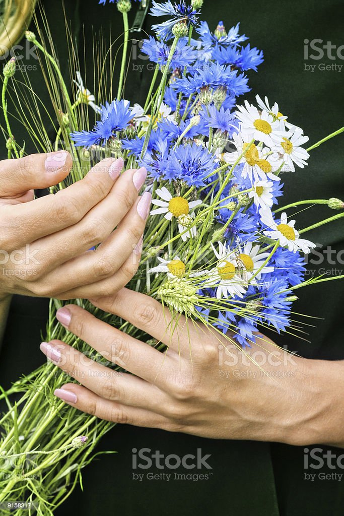 Flowers and hands royalty-free stock photo