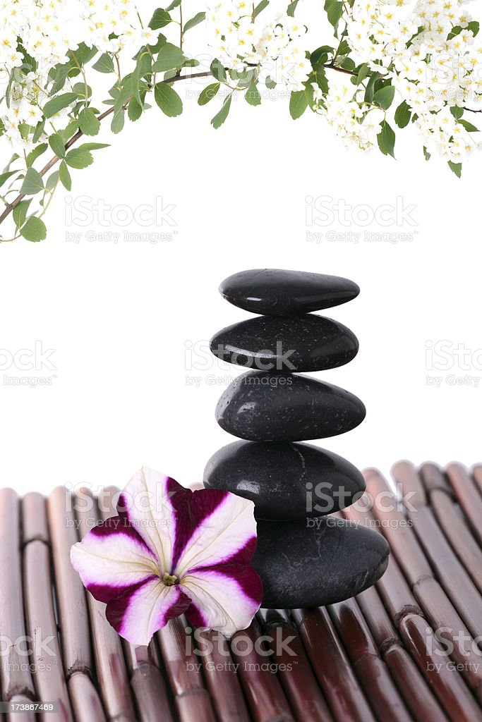 Flowers and Lava Stones Isolated on White stock photo