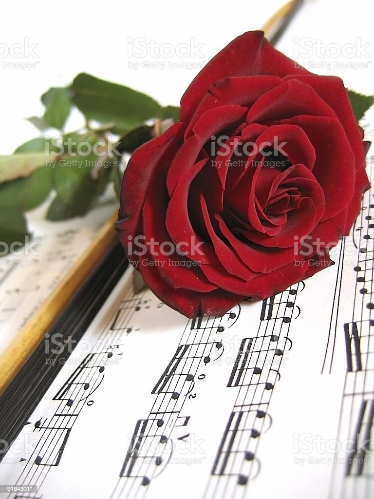 Flowers and music royalty-free stock photo