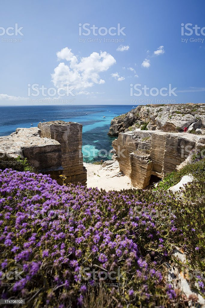 Flowers and paradise beach royalty-free stock photo
