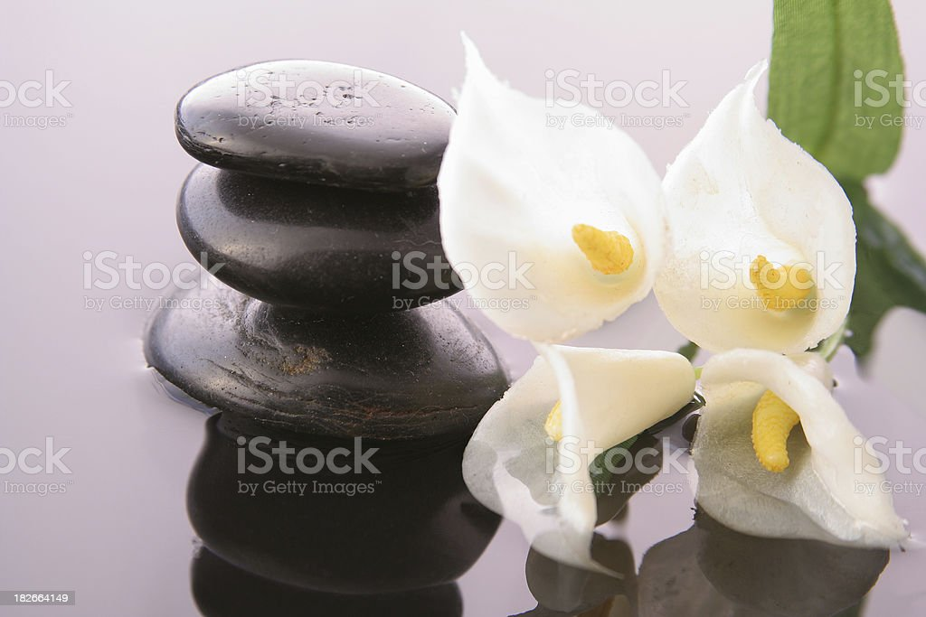 Flowers and pebbles royalty-free stock photo