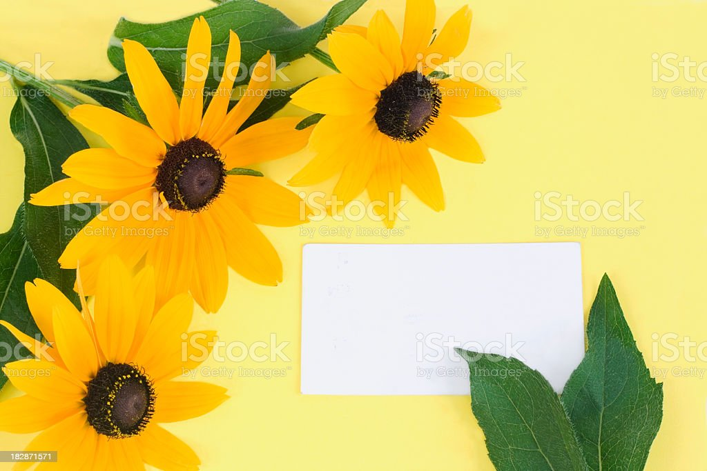flowers and post card stock photo