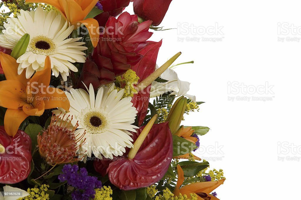 flowers arrangment 4 royalty-free stock photo