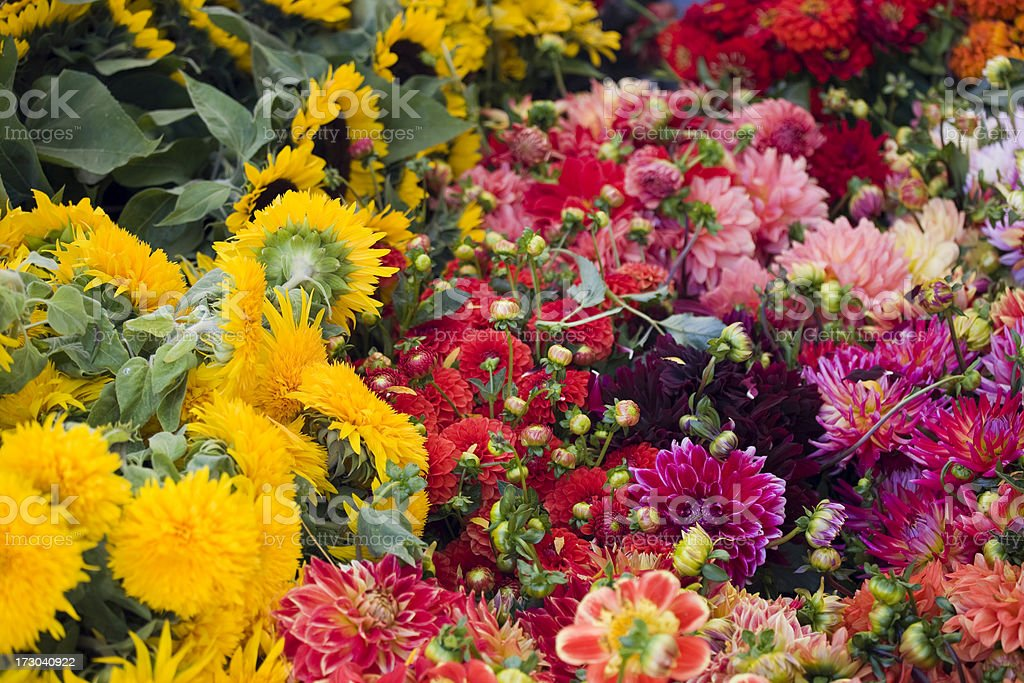 Flowers at an outdoor flower street market royalty-free stock photo