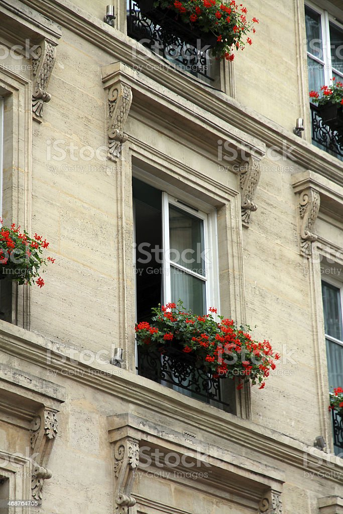 Flowers at the Window royalty-free stock photo