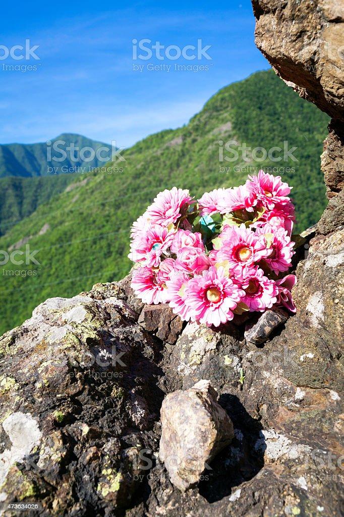Flowers bouquet. Color image stock photo