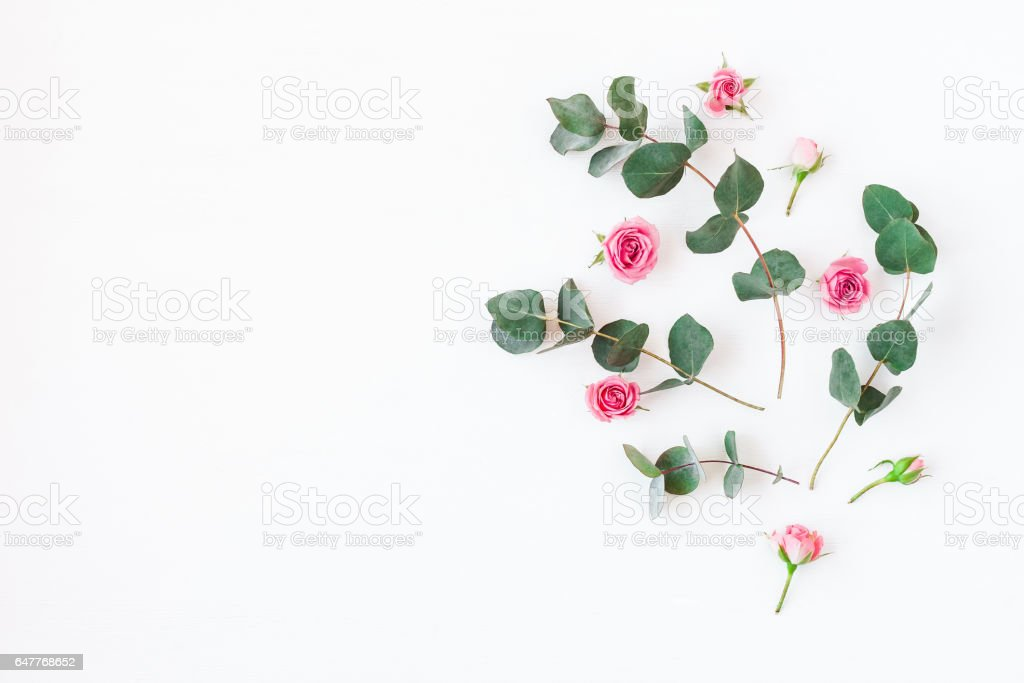 Flowers composition made of rose flowers and eucalyptus branches stock photo