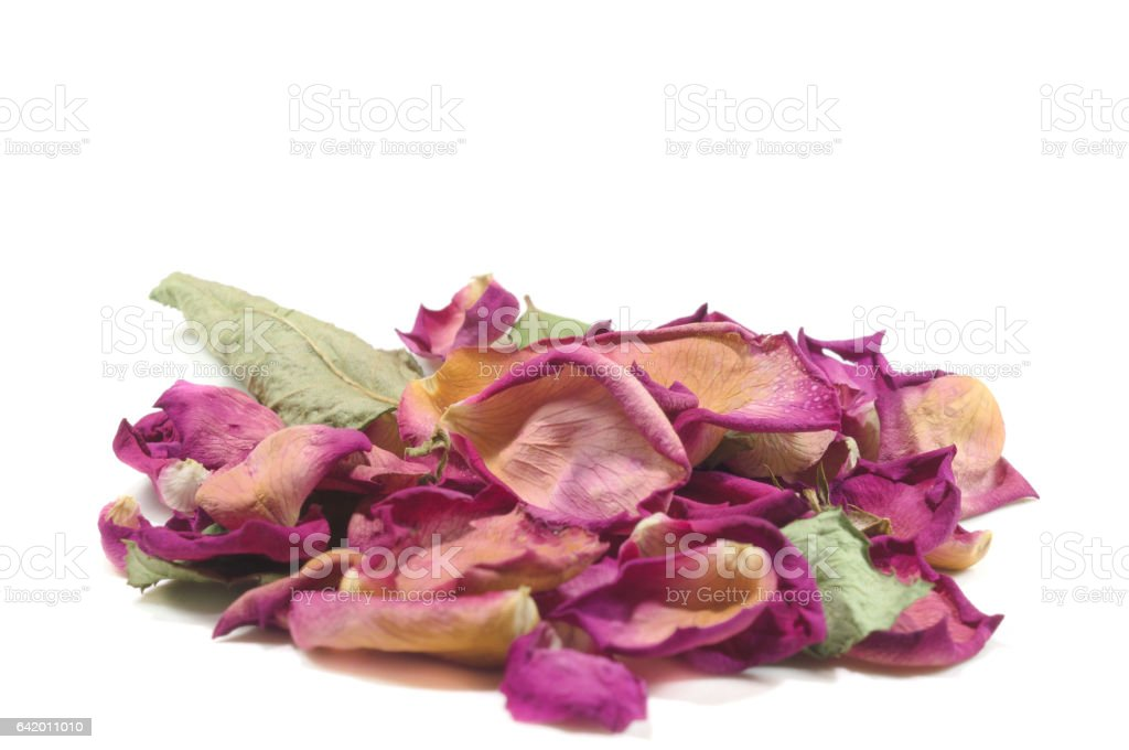 Flowers composition of dried rose flowers. stock photo