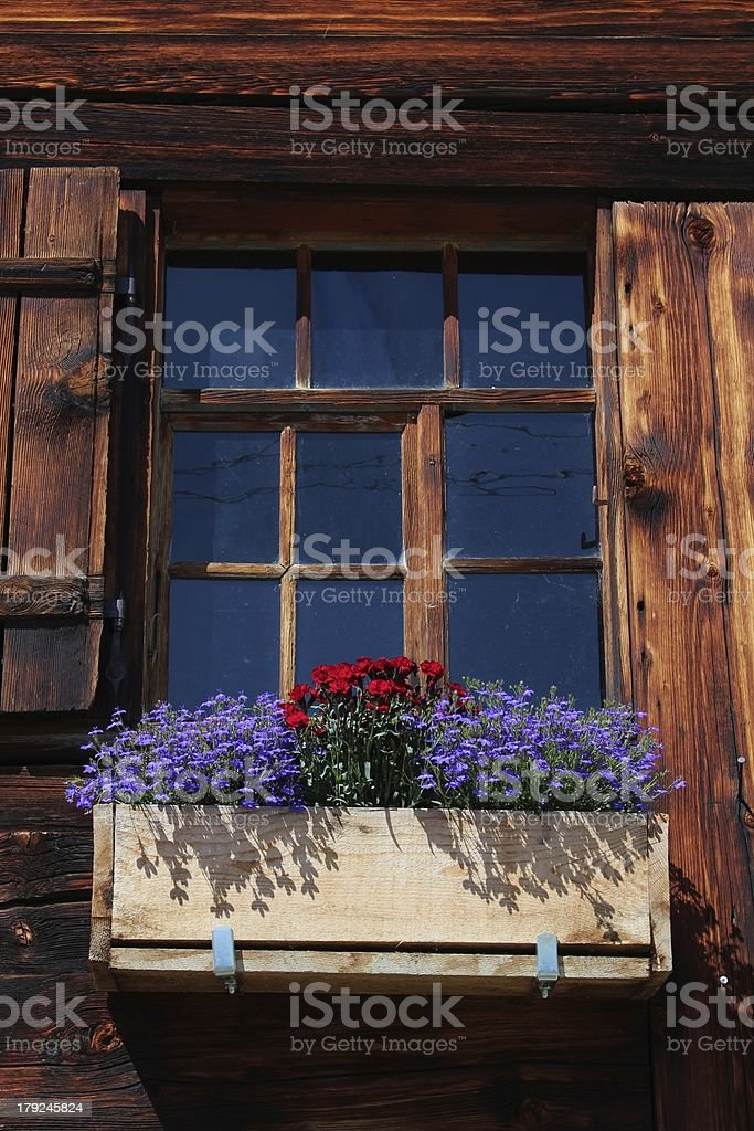 Flowers decorating a old window royalty-free stock photo