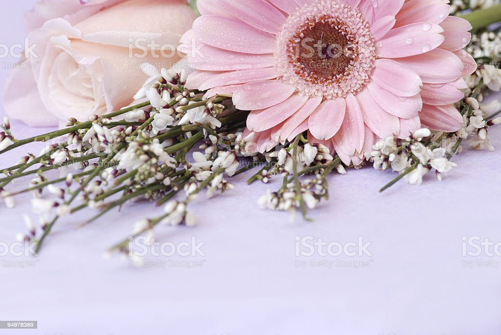 flower's decoration royalty-free stock photo