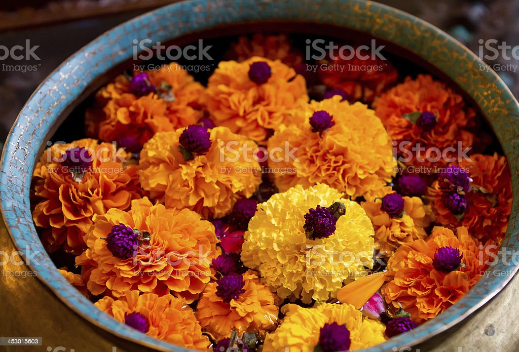 Flowers floating in a container stock photo