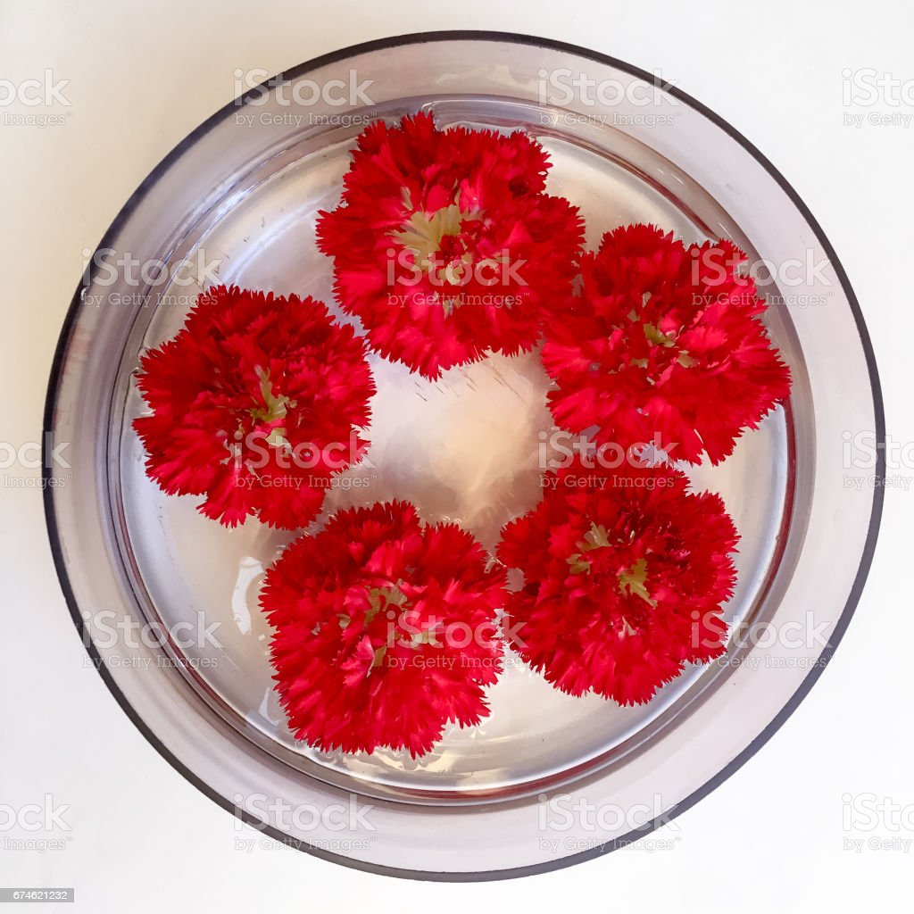 Flowers floating on water stock photo