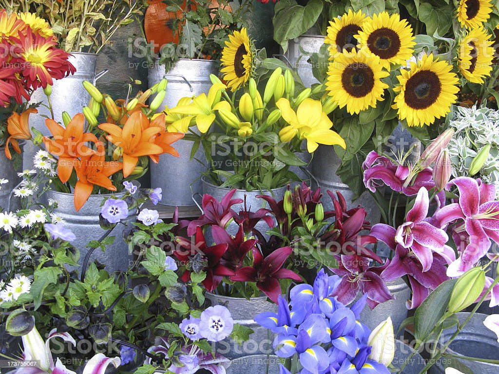Flowers Florist Lily Sunflower Display royalty-free stock photo